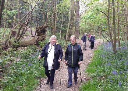 Nordic Walking – a blog by Silverfit member Sue Gearin